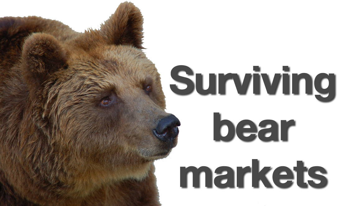 Strategies for investing in bear markets