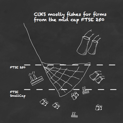 CUKS mostly fishes for firms in the depths of the mid cap FTSE 250