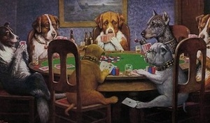 Trying to gamble your way to riches is barking mad