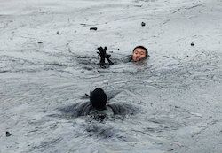 Someone who needed rescuing from an oil spill. Let's hope that's not me in 12 months!