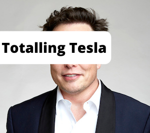 Image of Elon Musk with the caption Totalling Tesla
